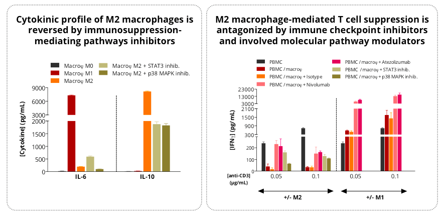 New in vitro Shuttle Session: M2 Macrophage Suppression Assay
